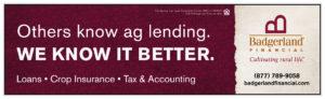 13 - badgerlandfinancial2-01